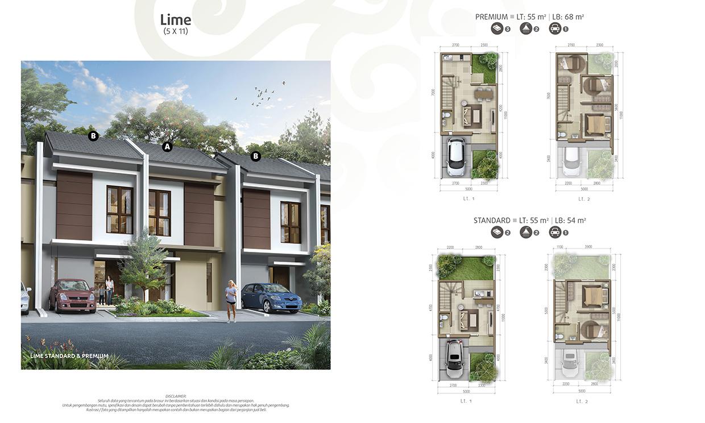 Lime 5x11