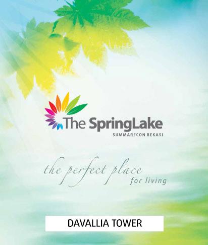 Davallia The SpringLake Brochure