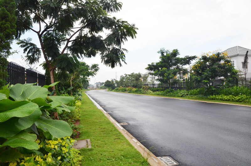 green-area