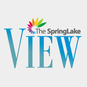 the-springlake-view-apartment